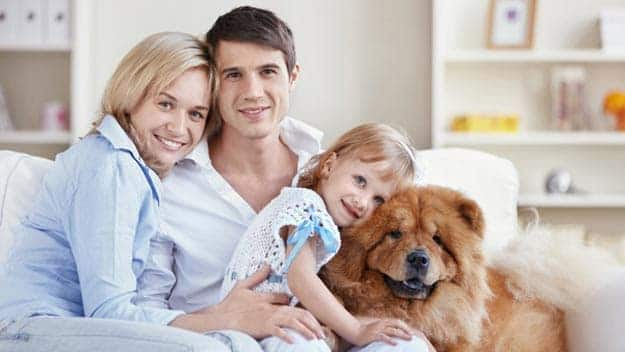 Wills & Trusts dog-young-family Direct Wills Orpington